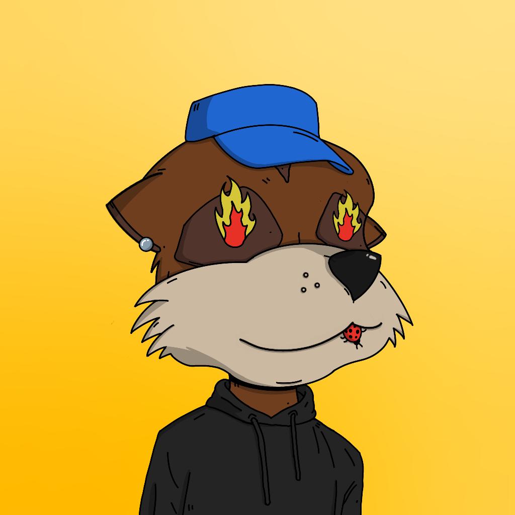 Meerkat #5388